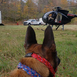 New England K9 Search and Rescue 9