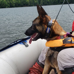 New England K9 Search and Rescue 13