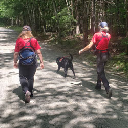 New England K9 Search and Rescue 16