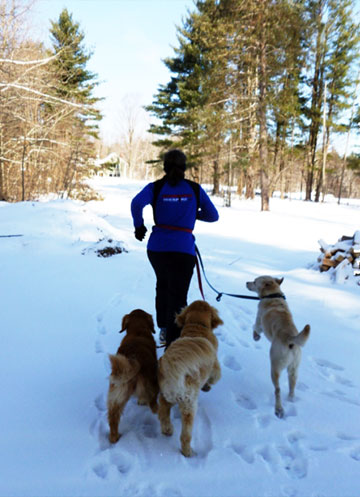 running in snow with dogs